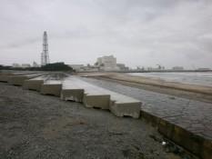 津波が襲った後の海浜公園。昔はキャンプ場やビーチだったそうです。